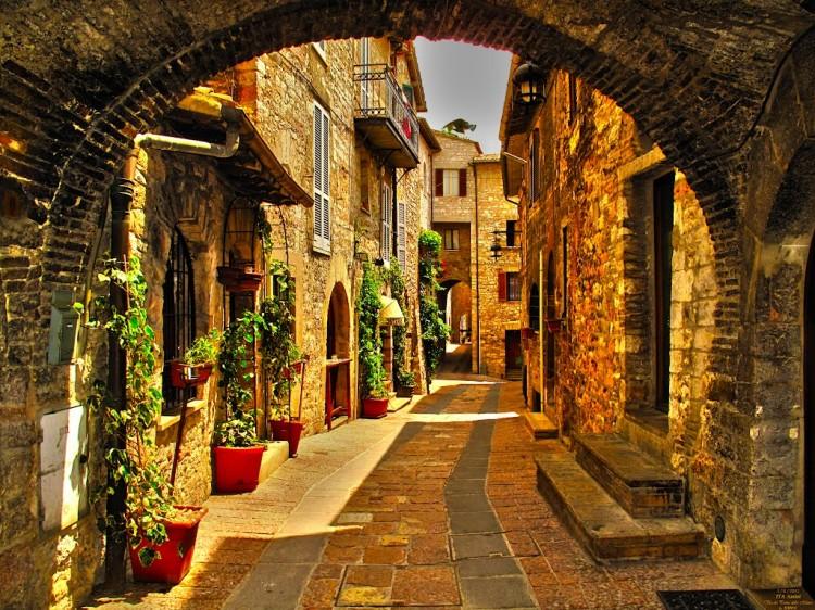 Assisi, dettagli
