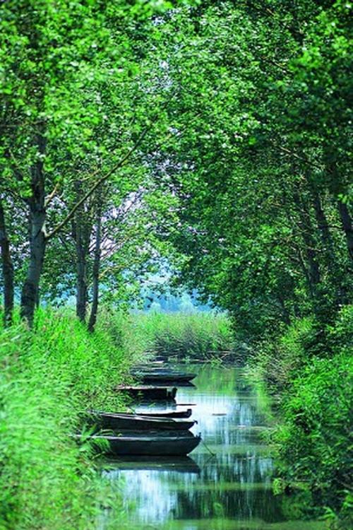 Lago di Montepulciano, barche bel canale