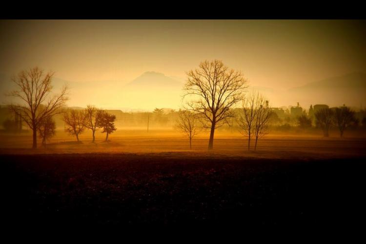 Val di Chiana, alba
